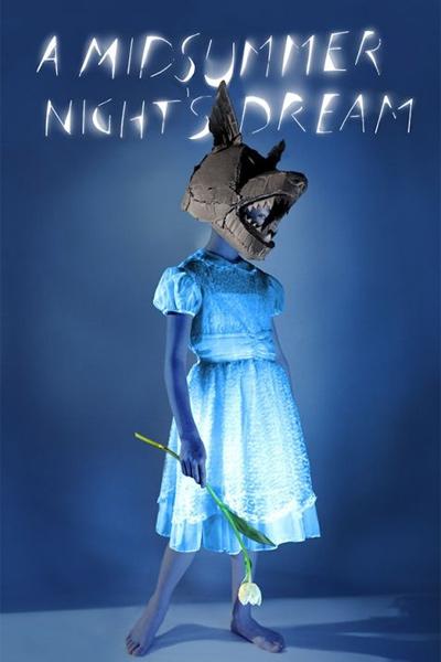 A Midsummer Night's Dream(2014)
